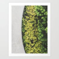 Greenly Art Print