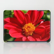 iPad Case featuring Red Is Beautiful by Christiane W. Schulz…