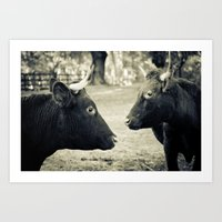 Cow Friends Art Print