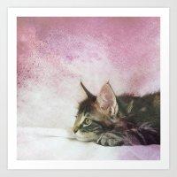 CAT Art Print