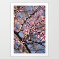 Spring is right around the Corner Art Print