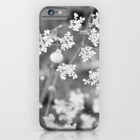 Queen Anne's Lace Wildfl… iPhone 6 Slim Case