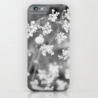 Queen Anne's Lace Wildfl… iPhone 6 Slim Case