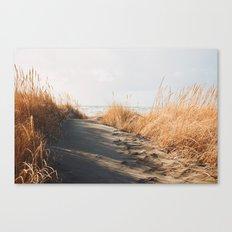 Trail to the beach Canvas Print