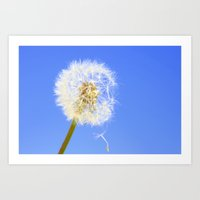 Wishing Flower Art Print