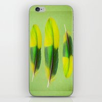 FEATHER FEATURE iPhone & iPod Skin