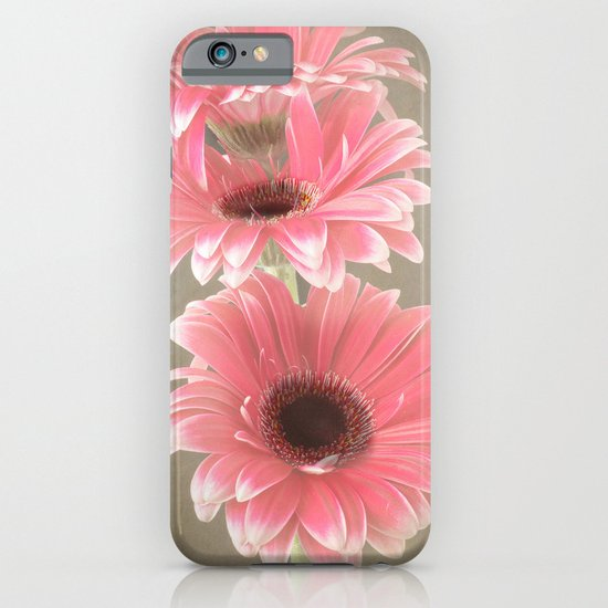 Three Pink Gerberas iPhone & iPod Case