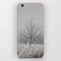Wintered iPhone & iPod Skin