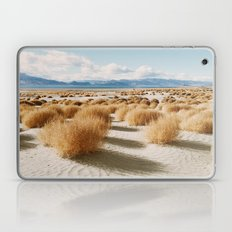 Paiute Land Laptop & iPad Skin