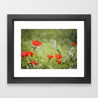 Anemones in the Sun Framed Art Print
