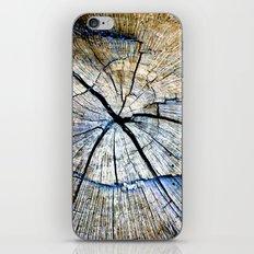 Wood Texture iPhone & iPod Skin