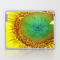 Sunflower from Seed Laptop & iPad Skin