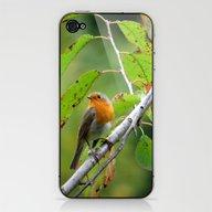MM - Robin Redbreast iPhone & iPod Skin