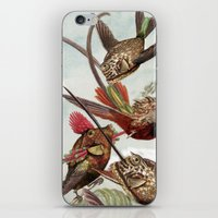 Flying fish 2 iPhone & iPod Skin