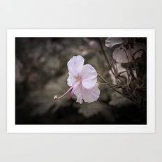 Delicate Reach Art Print