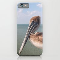 iPhone & iPod Case featuring Pelican by CosmosDesignz