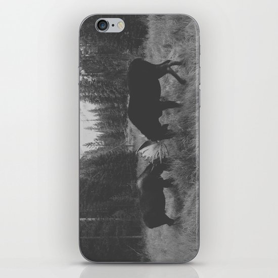 Moose Battle iPhone & iPod Skin