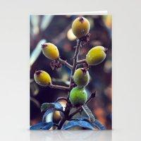 Exotic Fruits - Botanica… Stationery Cards