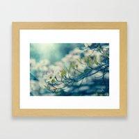 Dogwood Blossom Framed Art Print