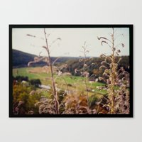 View From Castle Pappenh… Canvas Print