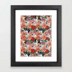French Bullbloom Framed Art Print