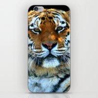 Sumatran Tiger - Panther… iPhone & iPod Skin