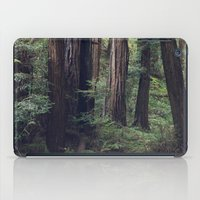 The Redwoods at Muir Woods iPad Case