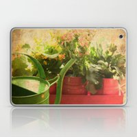 Flower Pots Laptop & iPad Skin