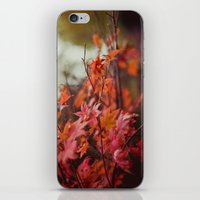 Acer iPhone & iPod Skin