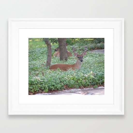 Here's Looking at You! Framed Art Print