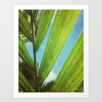 Tropical Outlook Art Print