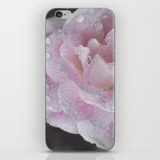 adorned iPhone & iPod Skin