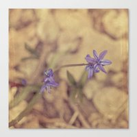 Canvas Print featuring Life is texture by Jaime Lynn Photography