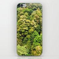 Itsukushima Forest iPhone & iPod Skin