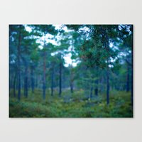 Another Forest Canvas Print