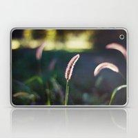 Autumn Grass II Laptop & iPad Skin