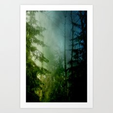 Blue pines Art Print