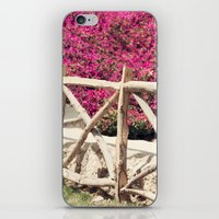 Spring fence iPhone & iPod Skin