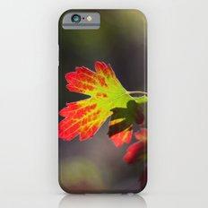 Autumn Leaf iPhone 6 Slim Case