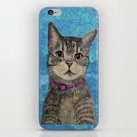 Pimp the Cat iPhone & iPod Skin