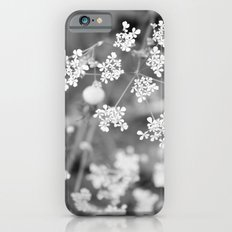 Queen Anne's Lace Wildflowers iPhone 6 Slim Case