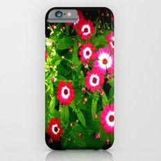 Daises Slim Case iPhone 6s