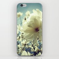 Magnolia White iPhone & iPod Skin