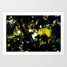 The sun exploded today Art Print