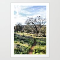 Trail into the Woods Art Print