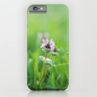 iPhone & iPod Case featuring Wild by Katie Kirkland Photography