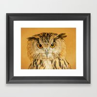 OWL RIGHT ON THE NIGHT Framed Art Print