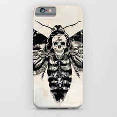 Death's-head Hawkmoth Slim Case iPhone 6s