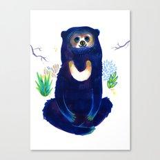 Sun Bear Canvas Print