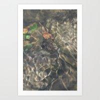 Natural Mosaic 2 Art Print